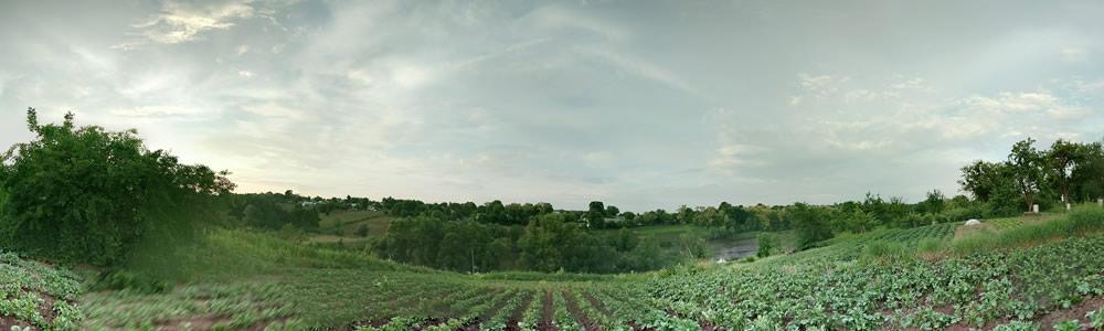 The view from the potato field near Lenin Street.
